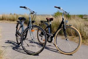 Vélos de ville gris ou noir